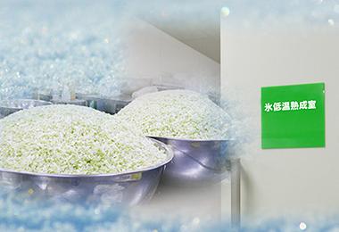 氷低温熟成室